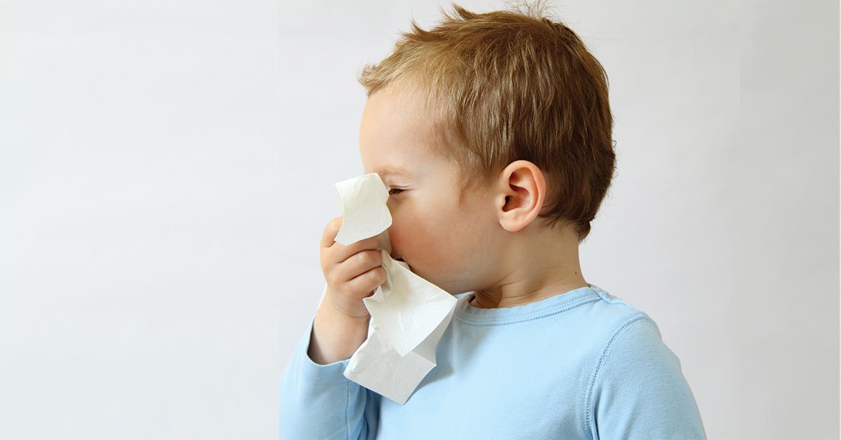 Regole prevenire influenza